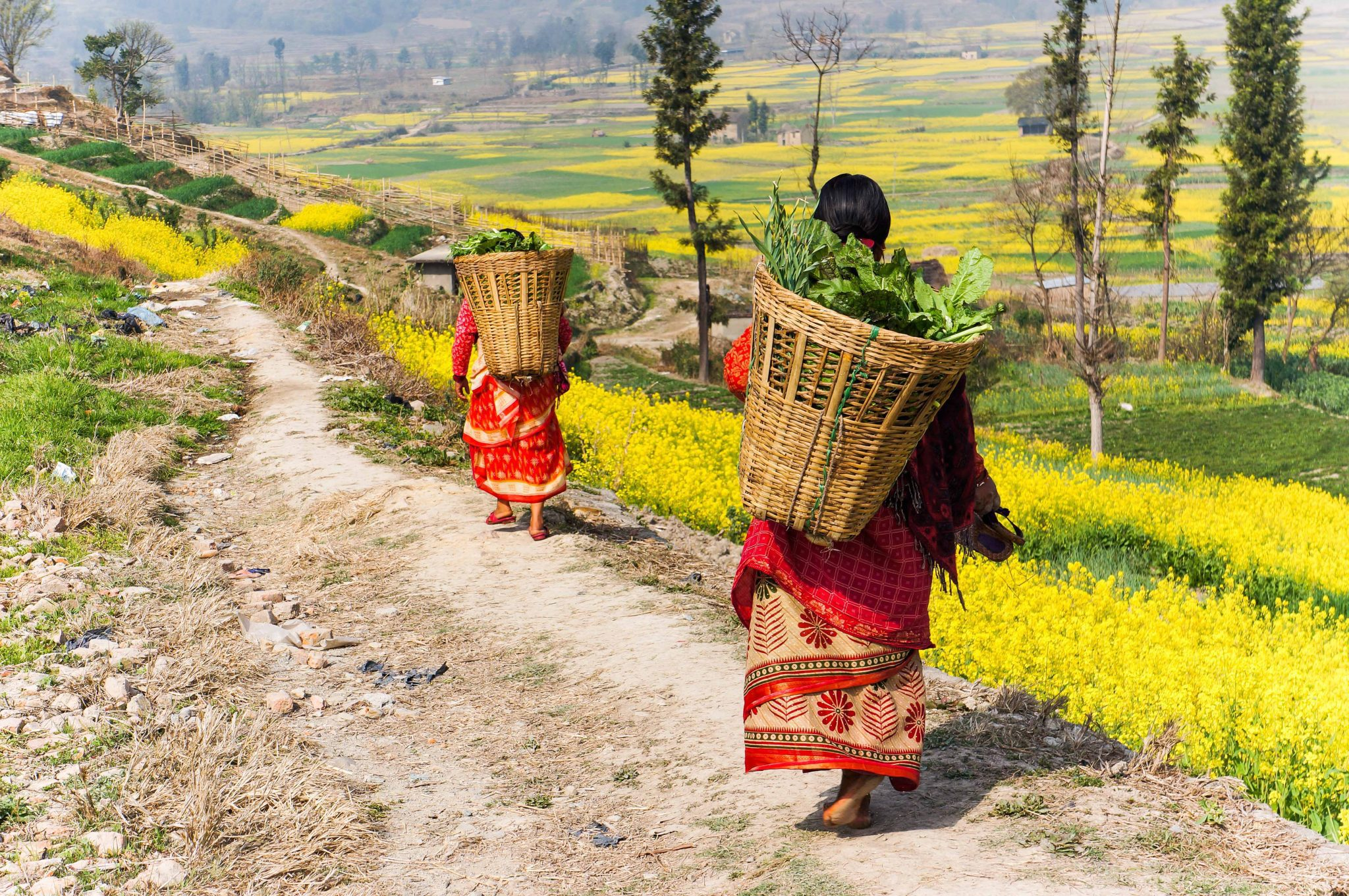 Nepal country life